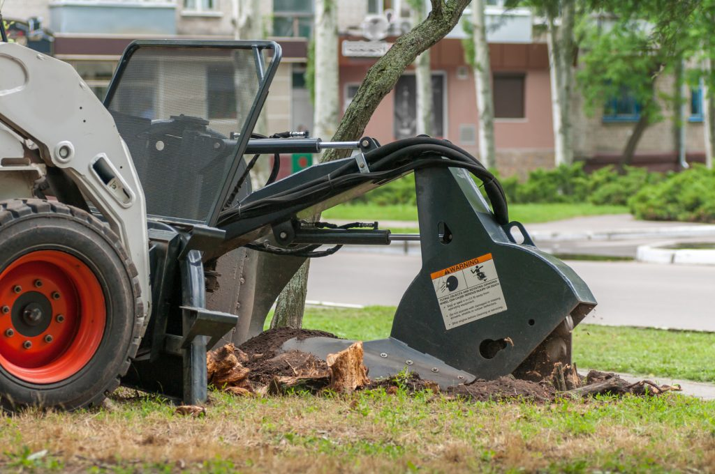 stump-removal-davidsonville-md